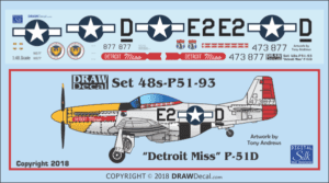 Image result for detroit miss p-51